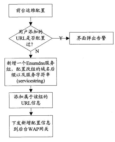 用于电话号码映射域名服务器Enumdns查询的方法
