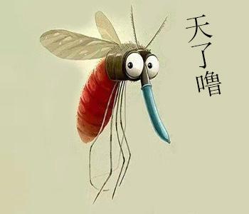 搞事情!谷歌放生2000万只蚊子只为灭蚊?