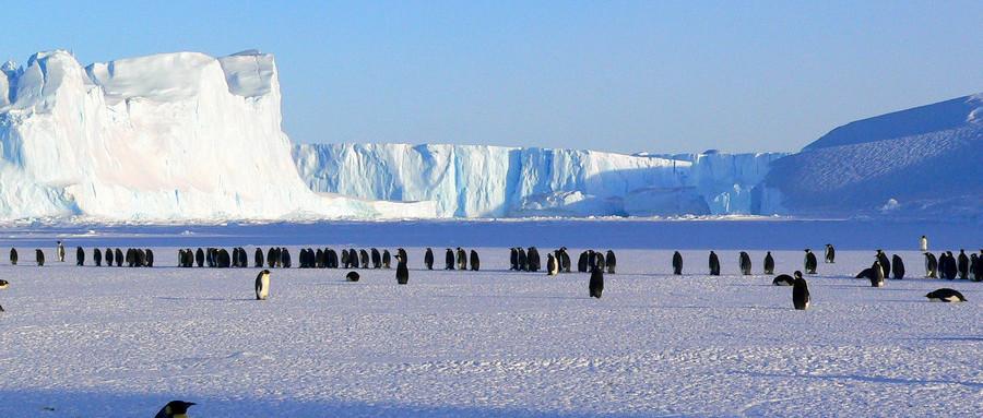 重磅!中国首个南极永久机场即将开建