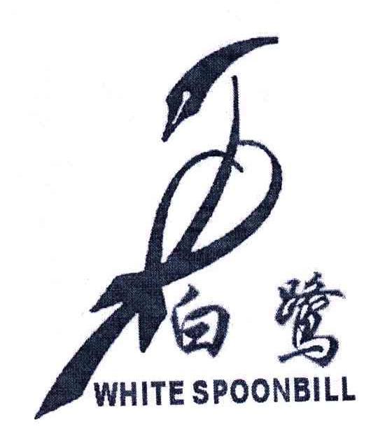 白鹭;WHITE SPOONBILL