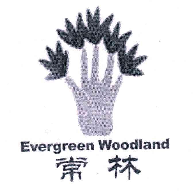 常(chang)林;EVERGREEN WOODLAND