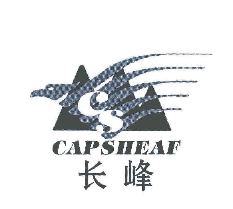 长峰;CS CAPSIIEAF;顶点