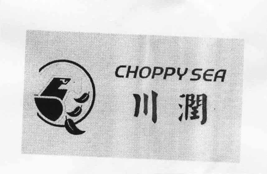 川潤;CHOPPY SEA