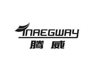 腾威 TNAEGWAY